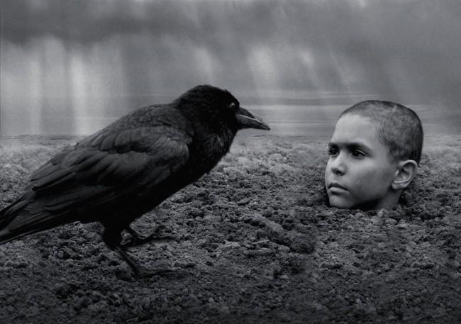 映画『異端の鳥』